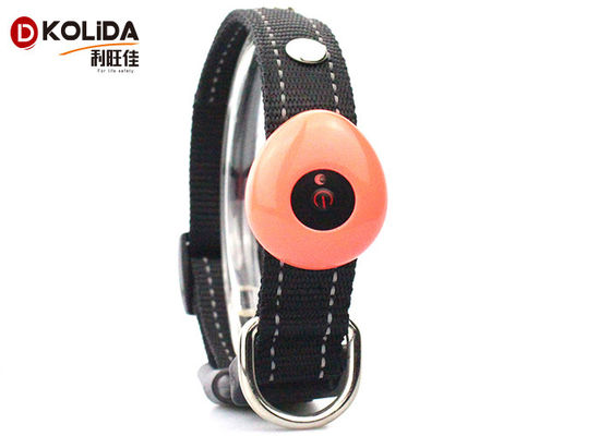 China Waterproof Light Up USB Rechargeable LED Dog Collar With Flashing Lights supplier