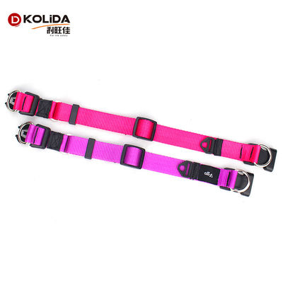 China Eco - Friendly Pet Collar For Dog Walking , Fashion Sport Dog Collar supplier