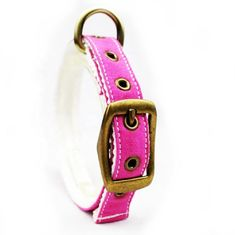 China C505 Wholesale Adjustable Canvas Cotton Waterproof Pet Dog Training Collar Sublimation supplier