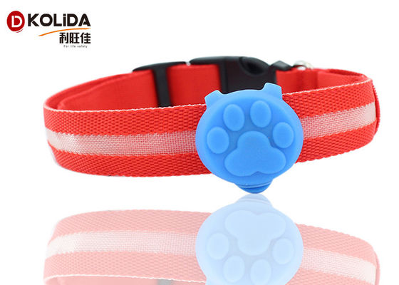 Dog LED Light