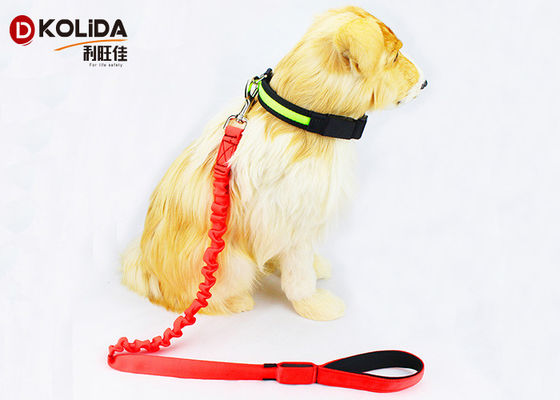 China Nylon Light Up USB Rechargeable LED Dog Leash Easy Walking For Doggies factory