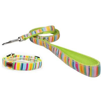 China Cute Rainbow Pet Dog Collar Leash Set Nylon Custom Logo Fashion Sublimation distributor