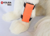 Orange Weather Resistant Dog Collar Safety Light LED Attacher Cover