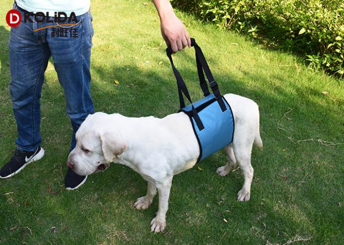 Red / Green Dog Body Harness Lift Help Sling Disabled Pet Support Vest